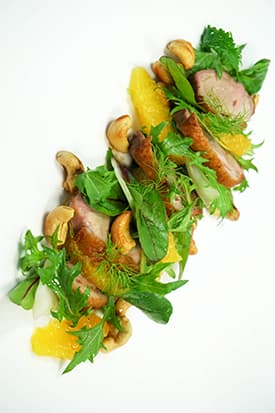 Roast Duck, Orange, Fennel Salad Toasted Cashews